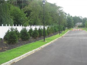 commercial-landscapers